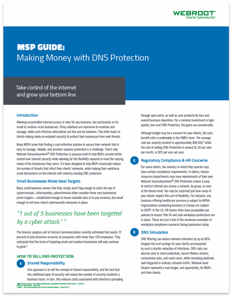 MSP Guide: Making Money with DNS Protection | The ChannelPro Network